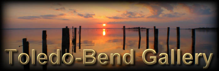 Toledo Bend Lake Gallery of Photographs